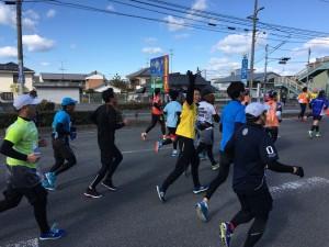 29愛媛マラソン④